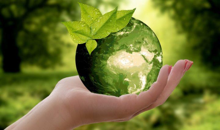 Duurzaam ondernemen: Waar begin je?